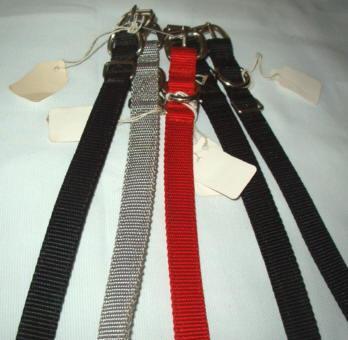 20 inch dog collar