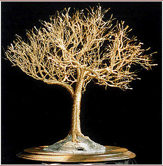 Golden Elm - Wire Tree Sculpture