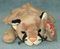 TY Beanie Baby Canyon Cougar Cat 1998 Retired Free Shipping