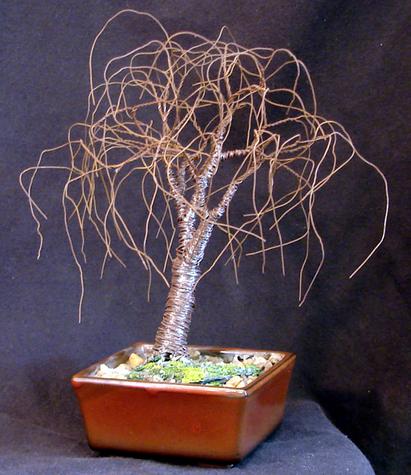Small Bonsai Elm, wire tree sculpture - by Sal Villano