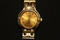 Geneva Goldtone Round Case Bracelet Ladies Watch