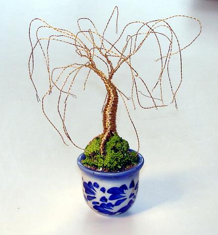 Mini Gold Willow