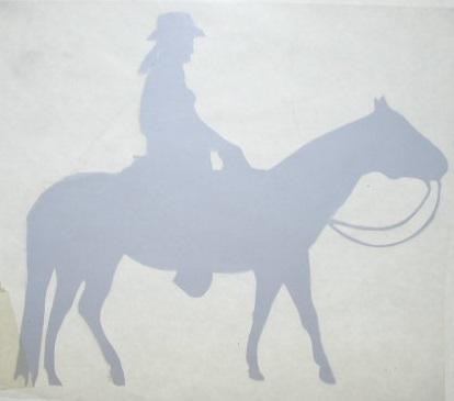 Western Pleasure Rider Silver Decals