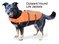 Designer Pet Saver Life Jacket by Outward Hound ~ Small + Medium