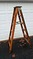 Wooden Linesman Ladder