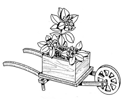 Wheelbarrow Planter #708 - Woodworking / Craft Pattern.
