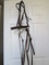 Bridle and reins; Braided Rope Bosal