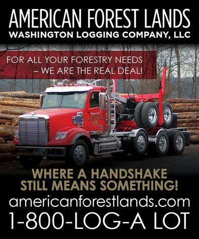Logging Services, Timber Tree Harvesting, Clearing, Trucking in Washington, Puget Sound and Northwest