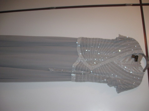 Long/brand new never worn Mother of the bride dress