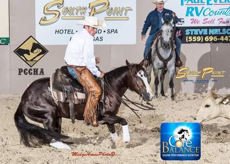 Cutting Horse Trainer