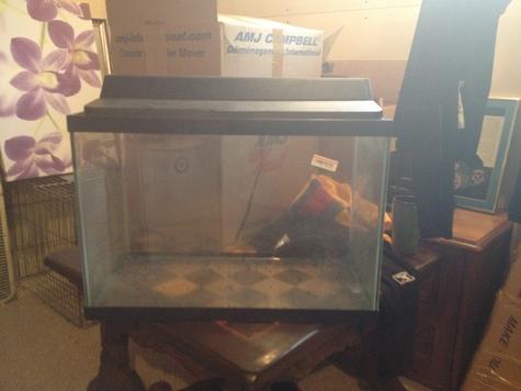 Top Fin Fish Tank