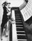 Quad Cities Piano Tuning and Repair, IA-IL Piano Tuner