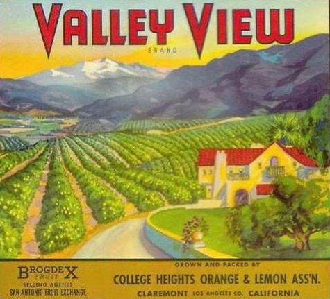 Valley View Brand Crate Label print