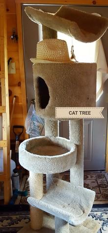CAT TREE  CAT CONDO