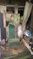 Click to view classifieds ONNFXKUL