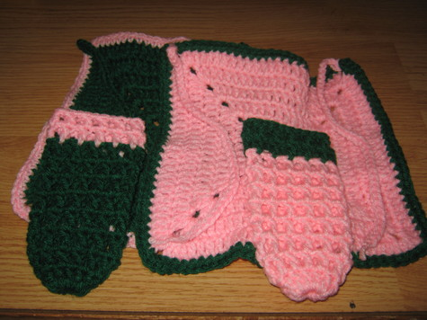 Green and Pink Baby Bib and Baby Bottle Cover Gift Set 2