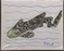 """Original Art Piece Titled """"Zebra Shark"""" on Canvas"""