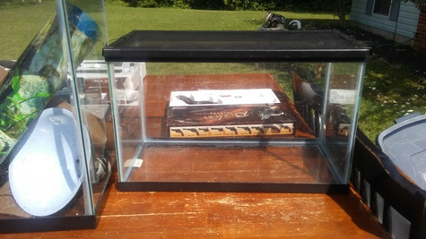 10 Gallon Critter cage/aquarium