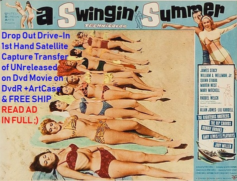 """A Swingin' Summer"" (1965){DvdR}"