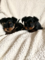 Male and Female Yorkie puppies ready