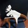 Hand Crafted Antler Carvings