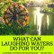 What Can Laughing Waters Do For You?