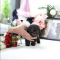 teacup toy puppies poodle puppies for sale