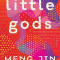Little Gods: A Novel...Author: Meng Jin (used hardcover)
