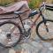 Motorized Bicycle
