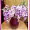 Gorgeous Jumbo Purple Glass Vase w/Long Violet Wisteria Bush 🥀